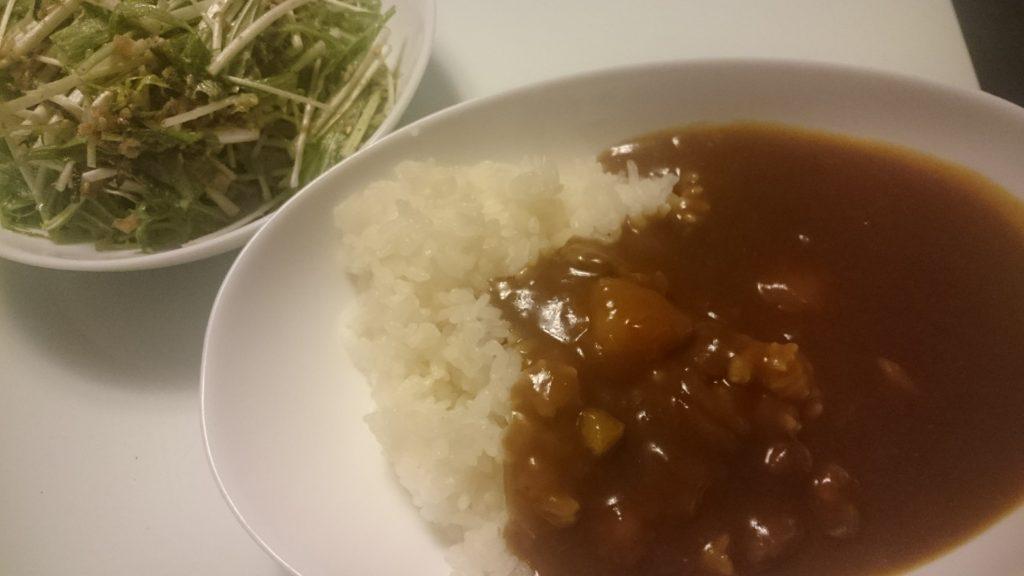 シーフードカレー+水菜のサラダ