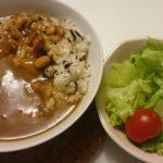 カレーライス+サラダ