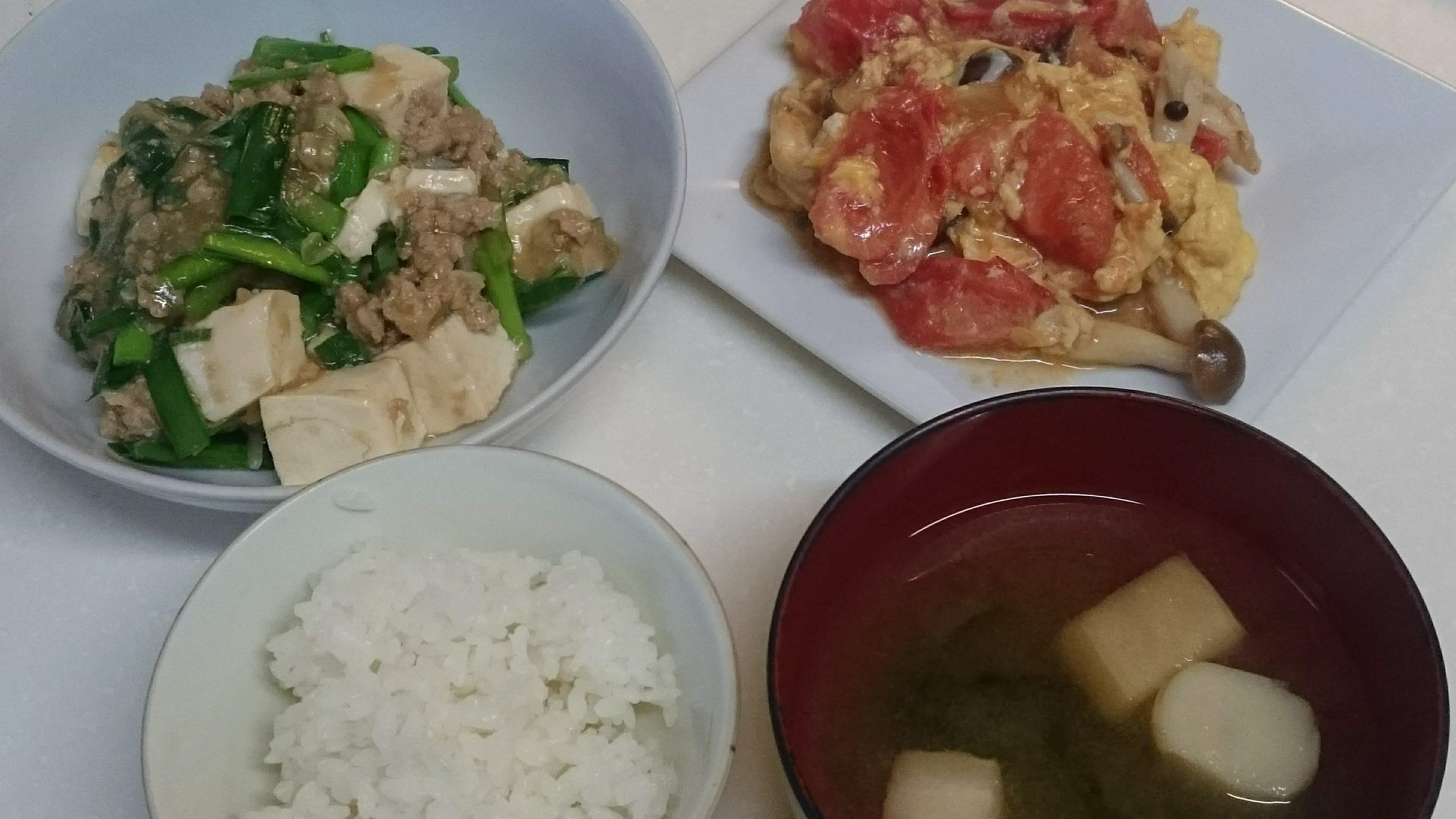 麻婆豆腐+トマ玉炒め