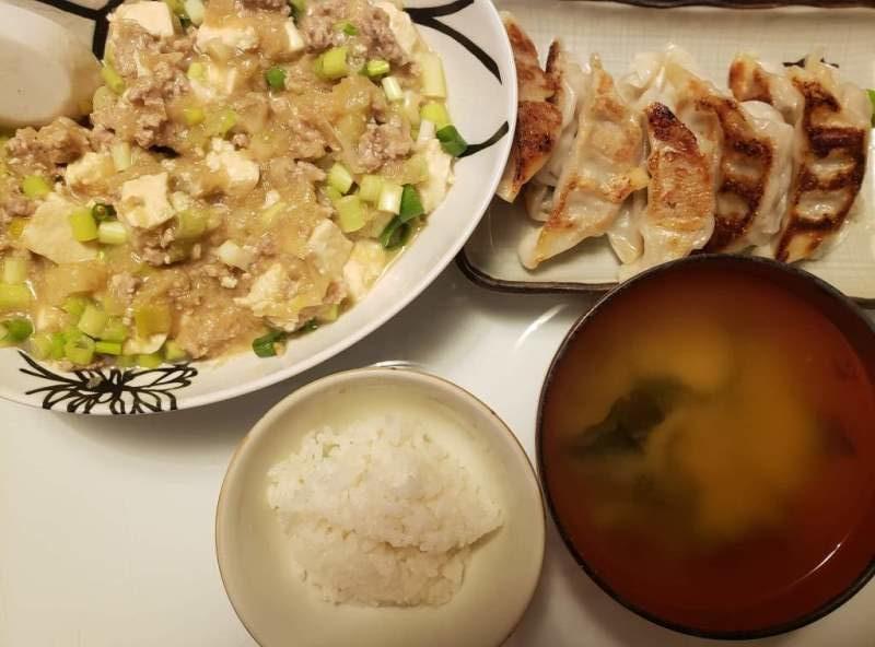 麻婆豆腐+餃子